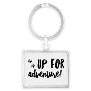 Up For Adventure - Keychain